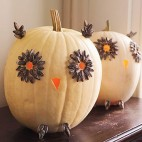 No carving pumpkin ideas