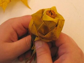 DIY Maple Leaf Roses